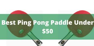 Best Ping Pong Paddle Under $50